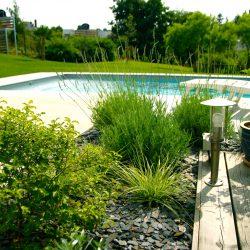 Ajoutez un élément esthétique: le bassin d'extérieur !